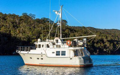 n43-calypso-22