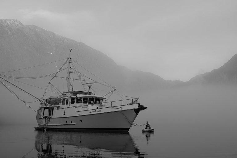 N46-salies-shore